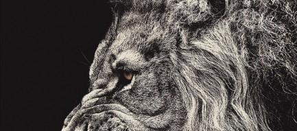 モノクロ 百獣の王 ライオン iPhone6壁紙