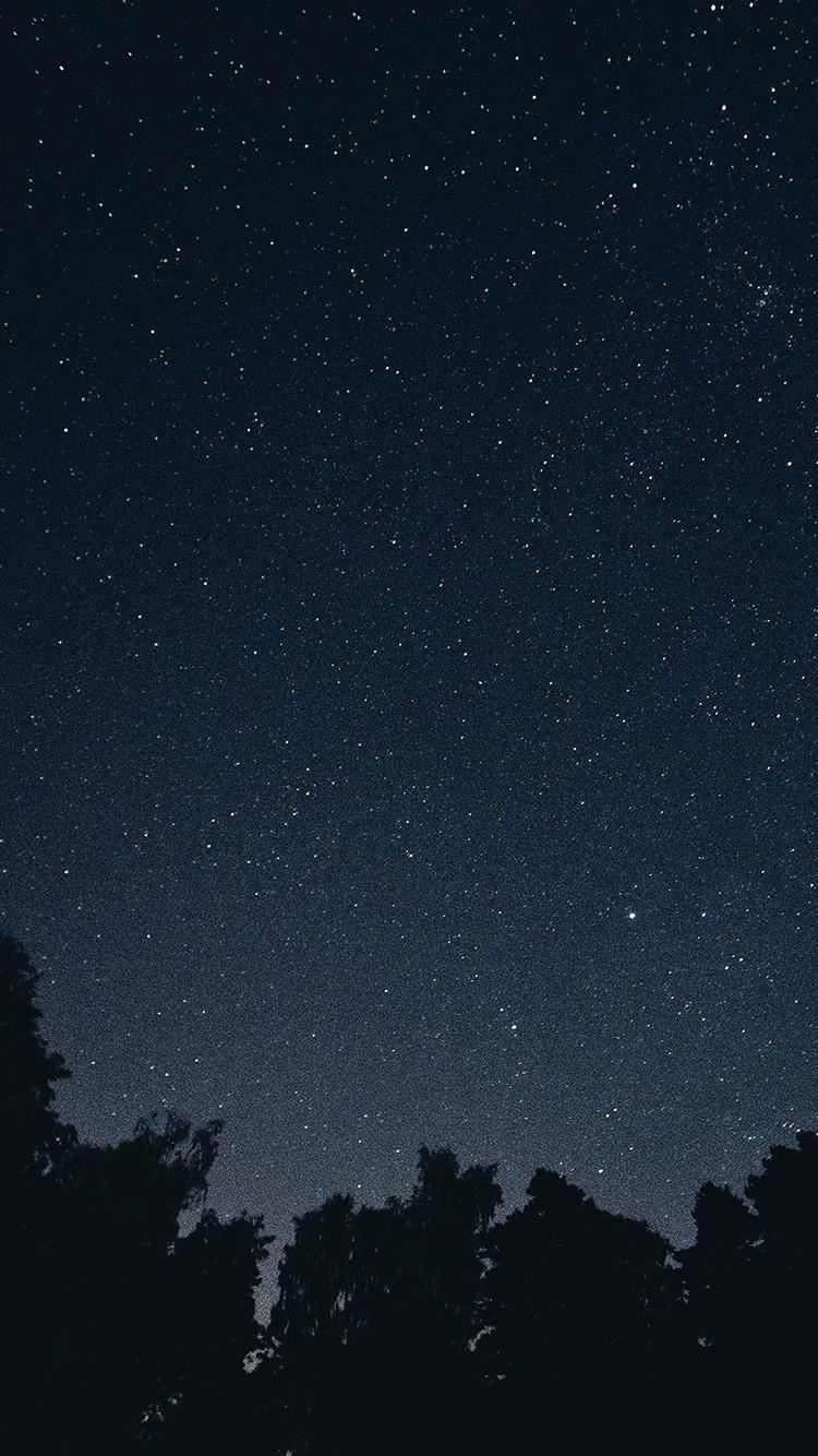 満天の星空と森 iPhone6壁紙