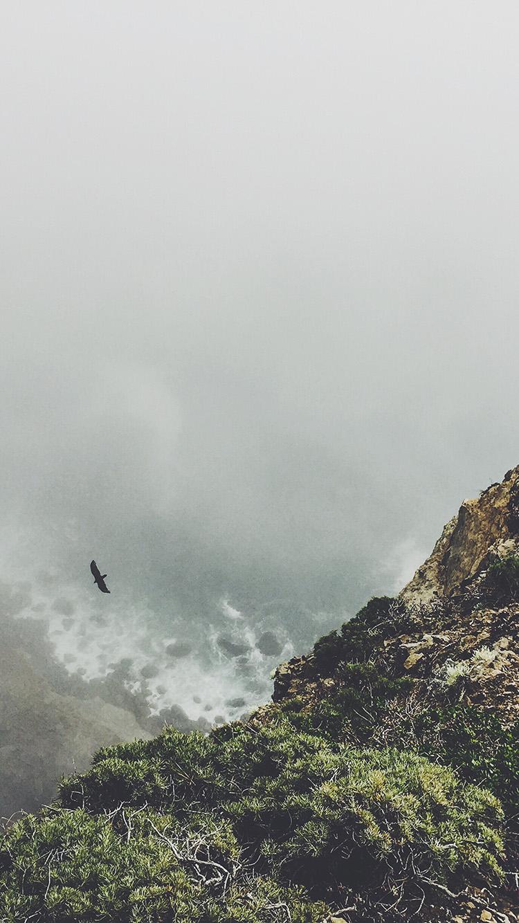 見下ろす海と空飛ぶトンビ iPhone6壁紙