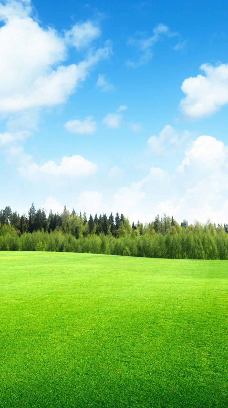Green Field iPhone6壁紙
