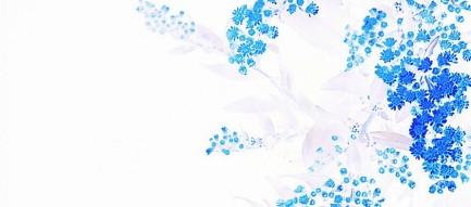 シンプル 青い花 iPhone6壁紙