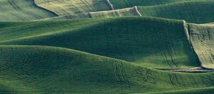 緩やかな緑の丘陵 iPhone6壁紙