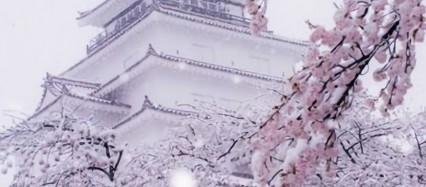 冬の江戸城 iPhone6壁紙