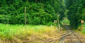 電車の壁紙#22サムネイル