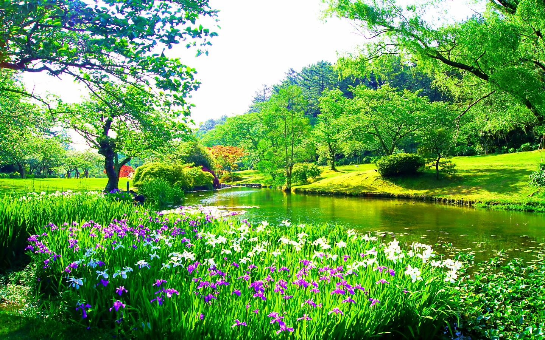 春を感じる壁紙を1440 900サイズ限定で集めてみた Naver まとめ