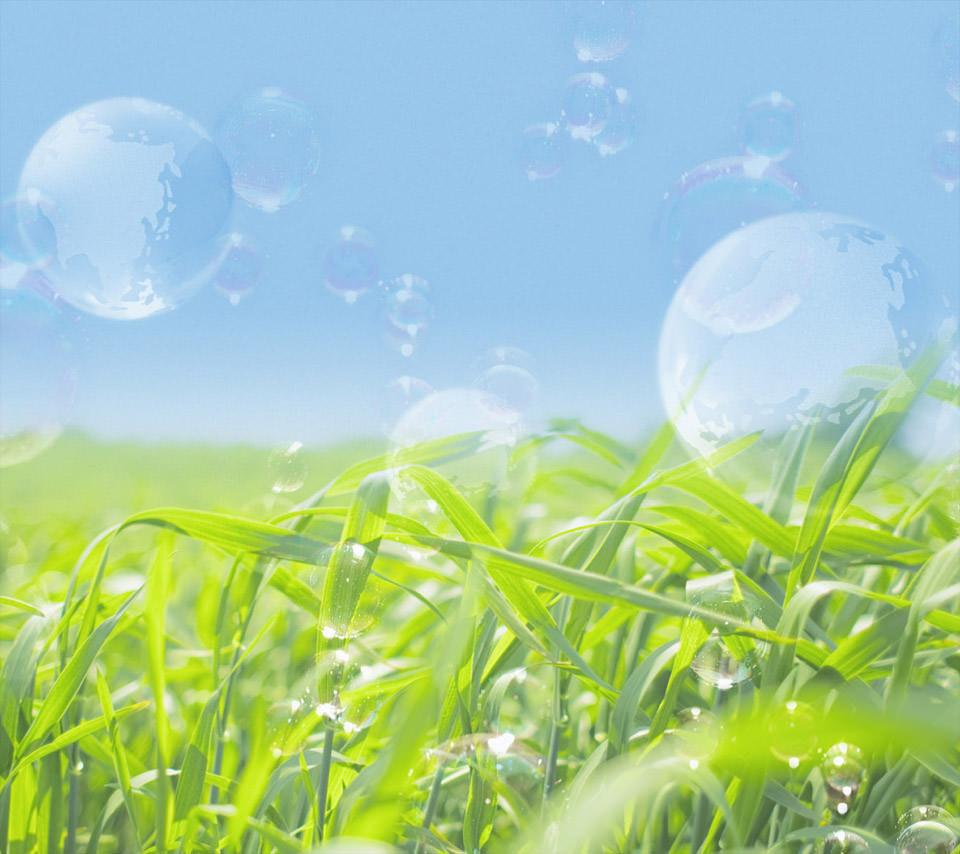 春来る緑のスマホ用壁紙(Android用/960×854)