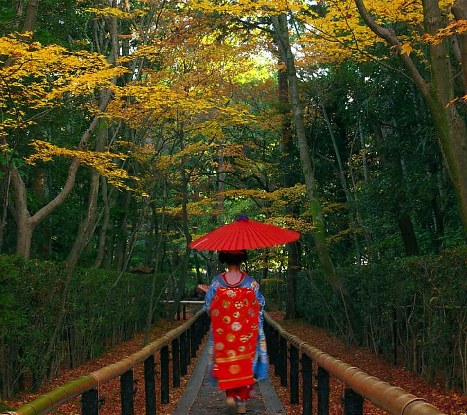 京都の舞妓さん スマホ用壁紙 Android 960 854 Wallpaperbox