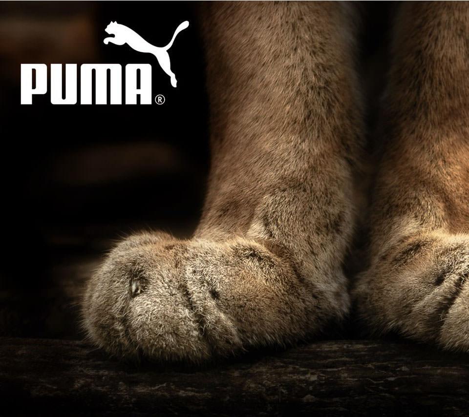 Puma スマホ用壁紙 Android 960 854 Wallpaperbox
