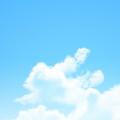 Summer! Androidスマホ壁紙