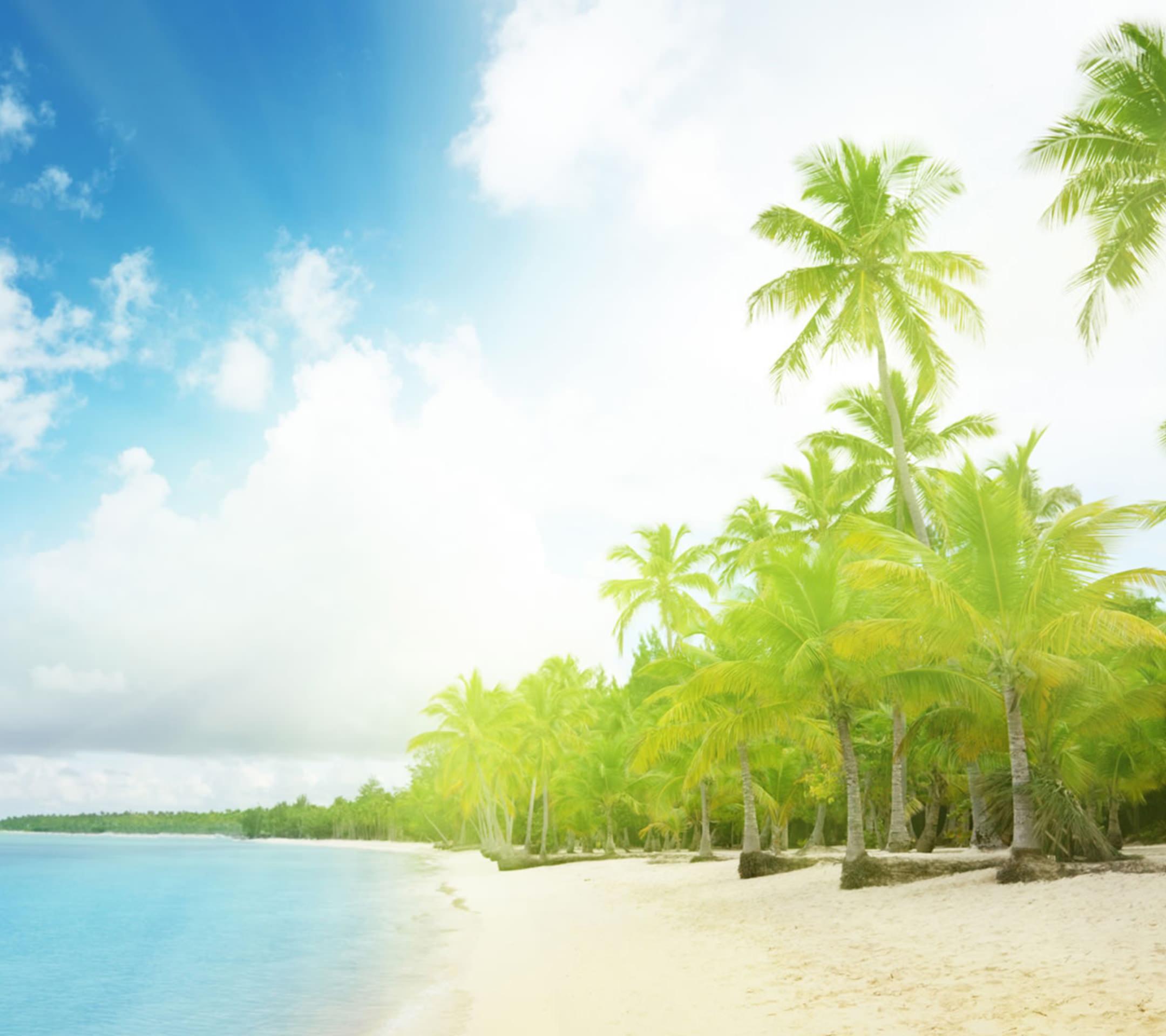 椰子の木のあるビーチ Android壁紙(2160x1920)